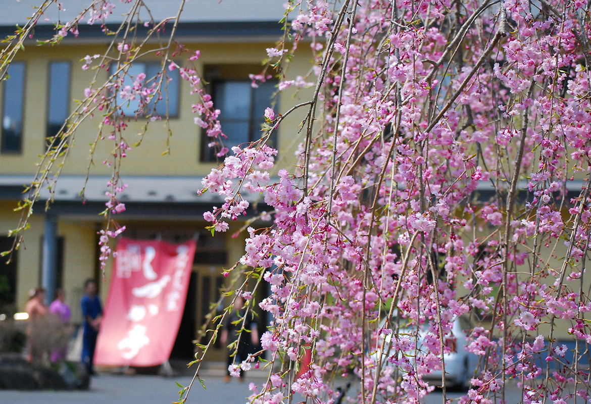 Hiraizumi, a town of the World Heritage